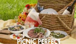 The image for Summer Picnic